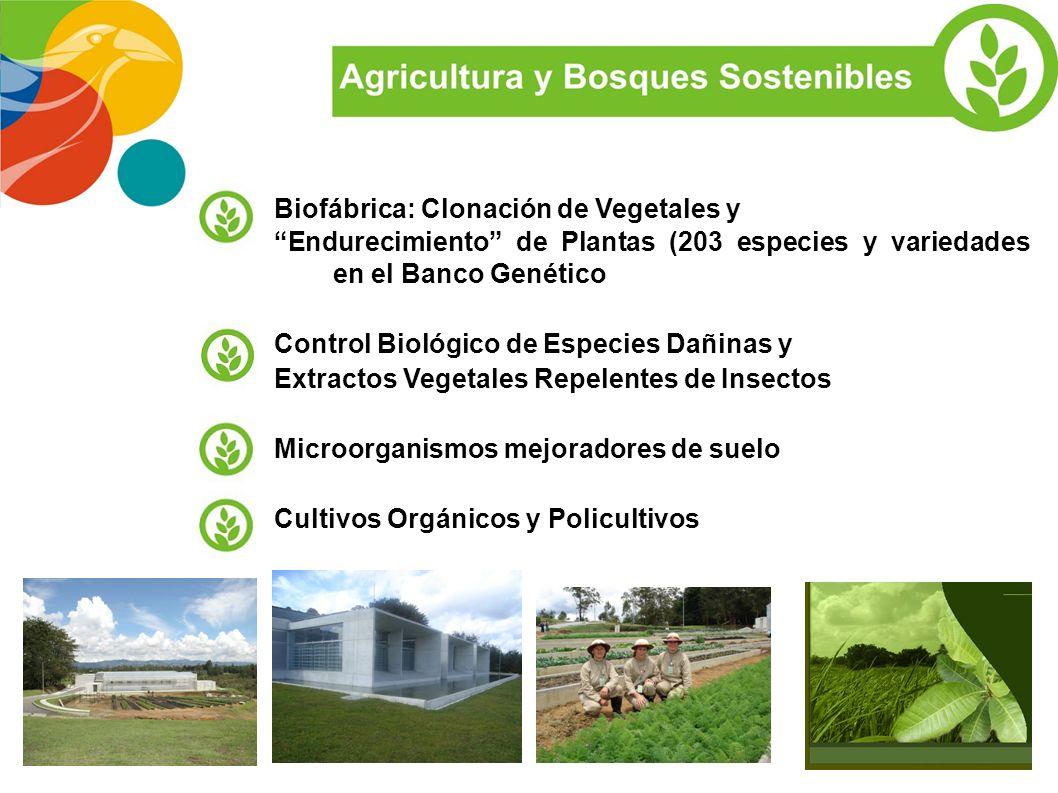 CREACIÓN DE CENTROS Y COMPAÑÍAS DE INNOVACIÓN en conjunto con Universidades, Centros de Investigación y sector privado de Antioquia ATRACCION DE COMPA