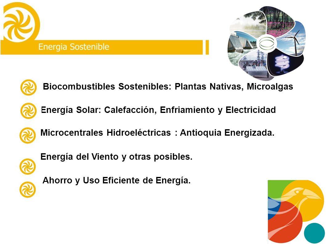 Curva de Rodas La Pradera PROYECTO MDL RELLENOS SANITARIOS MEDELLIN Universidad de Antioquia-EVM-Green Gas de Alemania