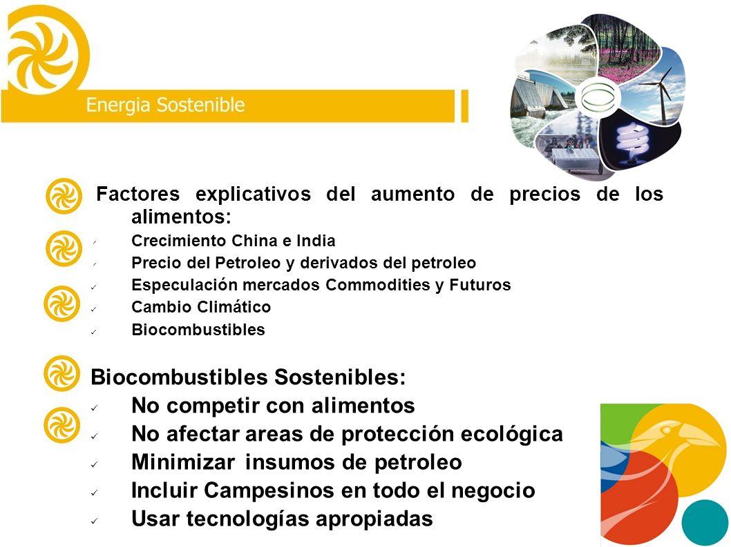 Biocombustibles Sostenibles: Plantas Nativas, Microalgas Energía Solar: Calefacción, Enfriamiento y Electricidad Microcentrales Hidroeléctricas : Anti