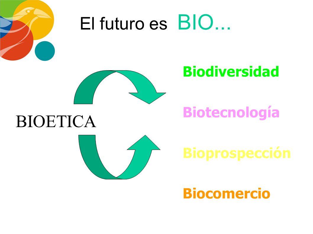 Parque Tecnológico de Antioquia S.A./ Plan Estratégico 2007-2010 Estrategia Social: RECINTO QUIRAMA Placer con Ciencia Eco-atracciones y actividades a
