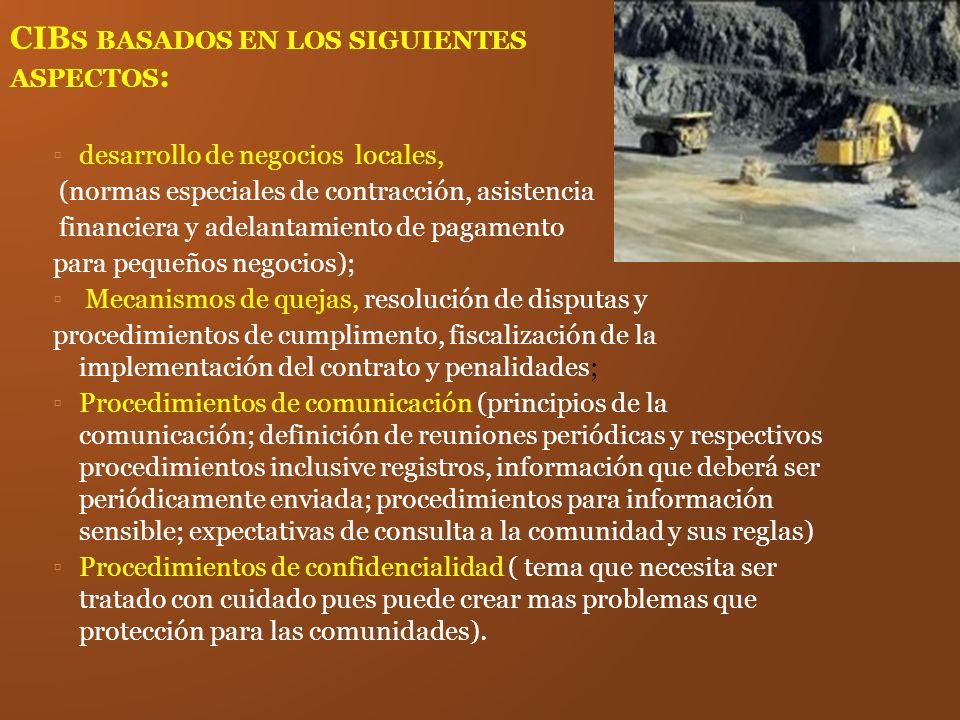 CIB S BASADOS EN LOS SIGUIENTES ASPECTOS : desarrollo de negocios locales, (normas especiales de contracción, asistencia financiera y adelantamiento d