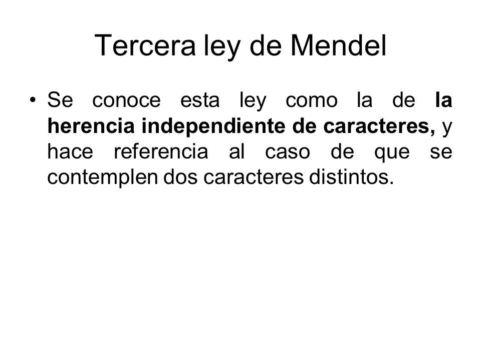 Tercera ley de Mendel Se conoce esta ley como la de la herencia independiente de caracteres, y hace referencia al caso de que se contemplen dos caract