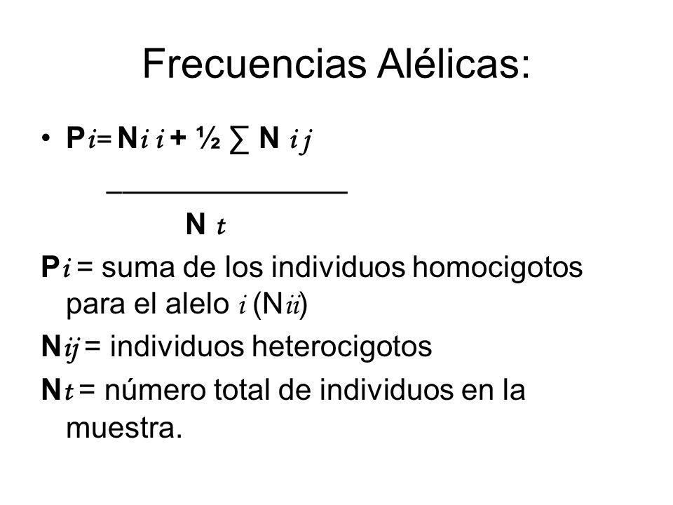 Frecuencias Alélicas: P i= N i i + ½ N i j ________________ N t P i = suma de los individuos homocigotos para el alelo i (N ii ) N ij = individuos het