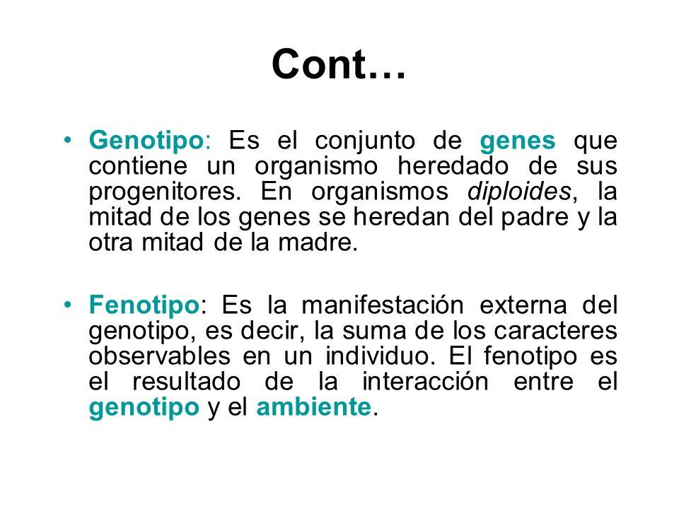 Cont… Genotipo: Es el conjunto de genes que contiene un organismo heredado de sus progenitores. En organismos diploides, la mitad de los genes se here