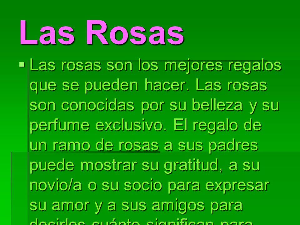 Las Rosas Las rosas son los mejores regalos que se pueden hacer. Las rosas son conocidas por su belleza y su perfume exclusivo. El regalo de un ramo d