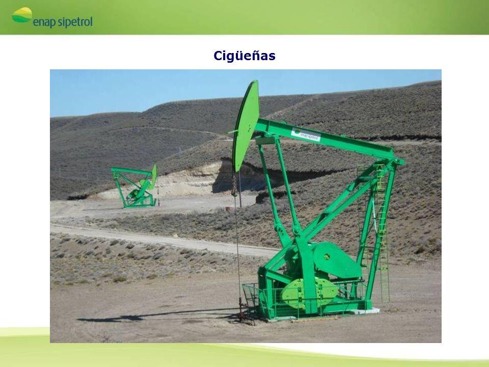 Enap Sipetrol Argentina Con seis plataformas productoras de petróleo y gas construidas, instaladas y operadas por medios propios frente a la boca oriental del Estrecho de Magallanes, Enap Sipetrol Argentina es el principal operador offshore del país.