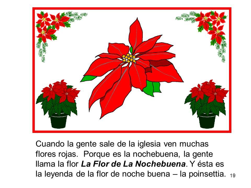 19 Cuando la gente sale de la iglesia ven muchas flores rojas. Porque es la nochebuena, la gente llama la flor La Flor de La Nochebuena. Y ésta es la