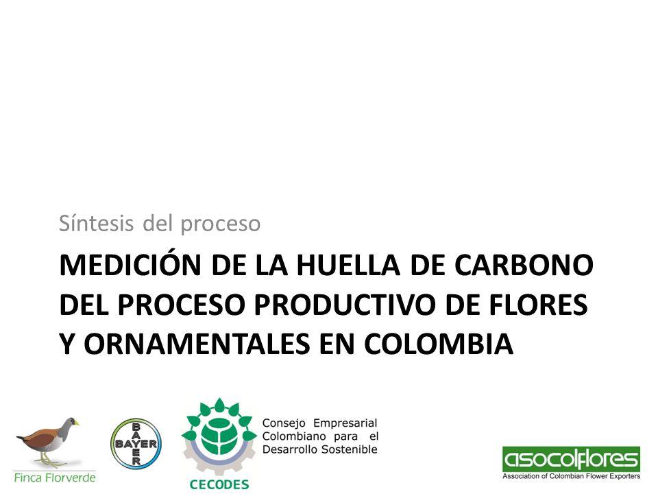 MEDICIÓN DE LA HUELLA DE CARBONO DEL PROCESO PRODUCTIVO DE FLORES Y ORNAMENTALES EN COLOMBIA Síntesis del proceso