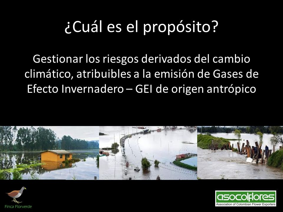 ¿Cuál es el propósito? Gestionar los riesgos derivados del cambio climático, atribuibles a la emisión de Gases de Efecto Invernadero – GEI de origen a