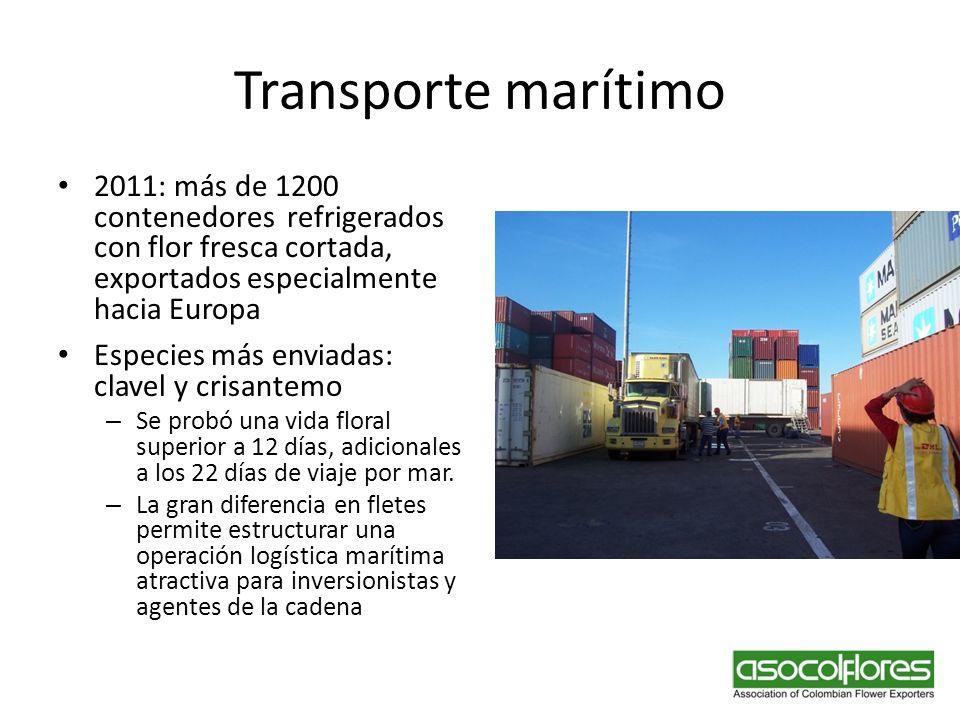 Transporte marítimo 2011: más de 1200 contenedores refrigerados con flor fresca cortada, exportados especialmente hacia Europa Especies más enviadas: