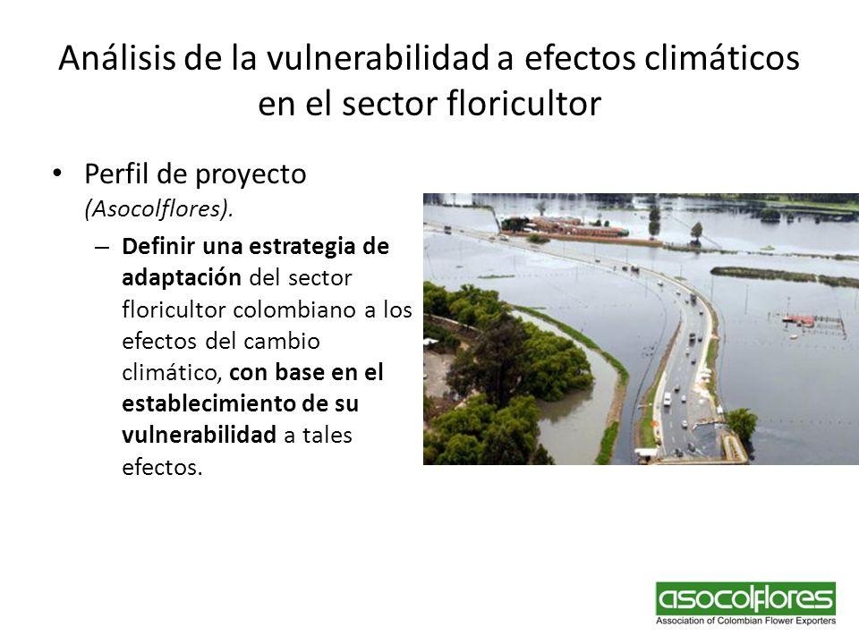 Análisis de la vulnerabilidad a efectos climáticos en el sector floricultor Perfil de proyecto (Asocolflores). – Definir una estrategia de adaptación
