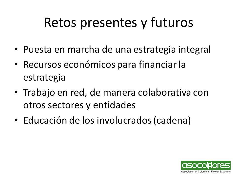 Retos presentes y futuros Puesta en marcha de una estrategia integral Recursos económicos para financiar la estrategia Trabajo en red, de manera colab