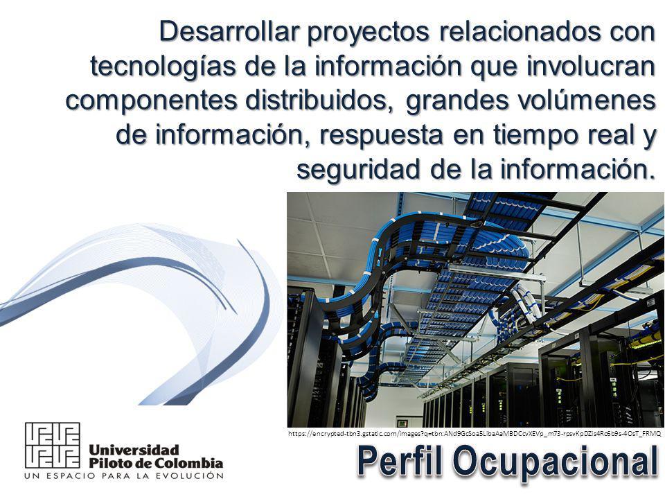Desarrollar proyectos relacionados con tecnologías de la información que involucran componentes distribuidos, grandes volúmenes de información, respuesta en tiempo real y seguridad de la información.