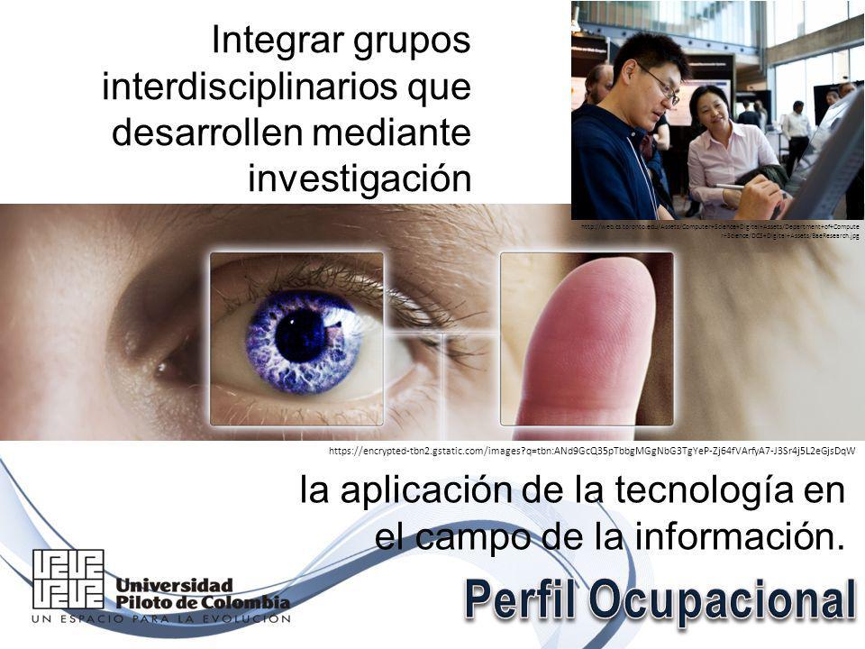Integrar grupos interdisciplinarios que desarrollen mediante investigación la aplicación de la tecnología en el campo de la información.
