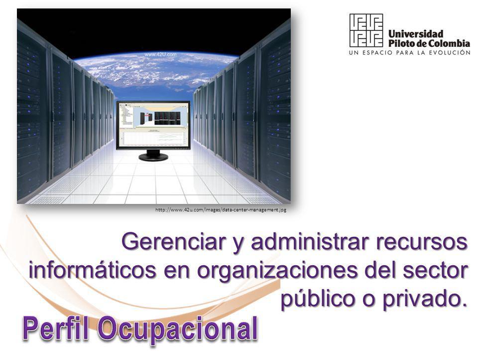 Gerenciar y administrar recursos informáticos en organizaciones del sector público o privado.