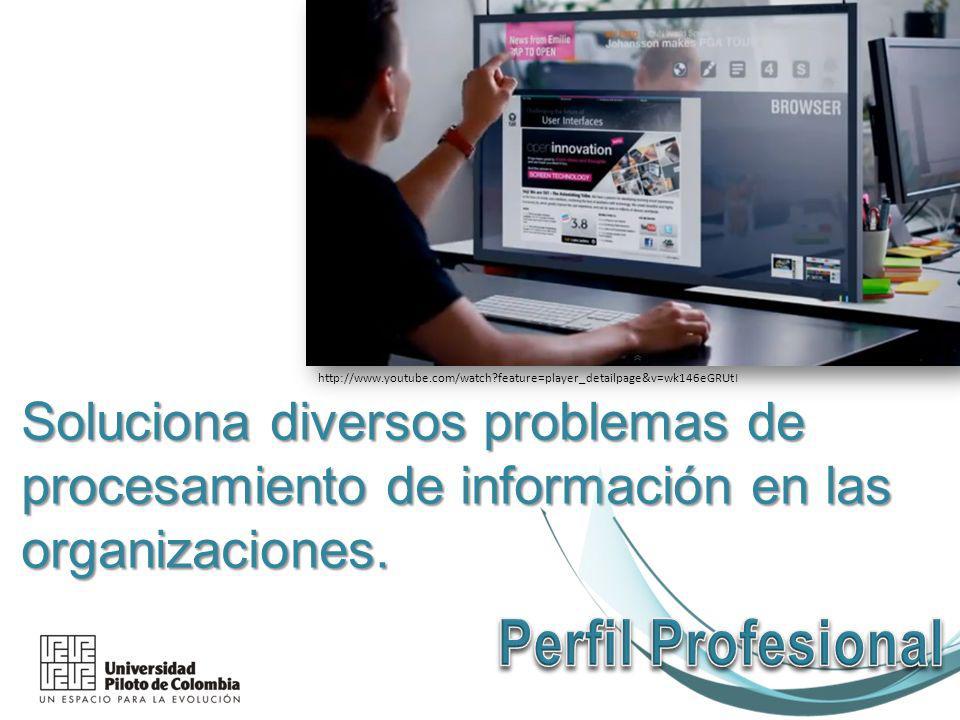 Soluciona diversos problemas de procesamiento de información en las organizaciones.