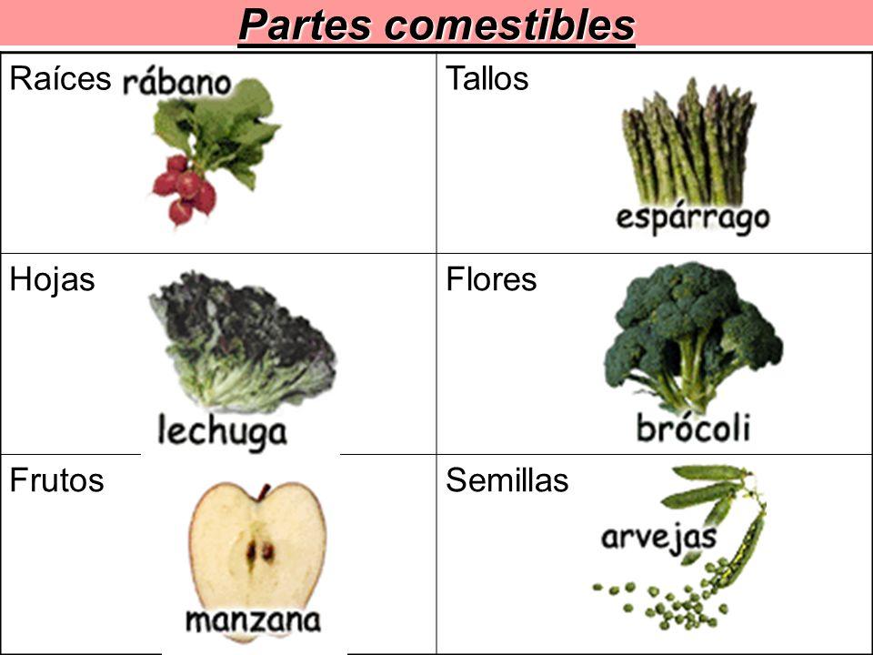 Partes comestibles RaícesTallos HojasFlores FrutosSemillas