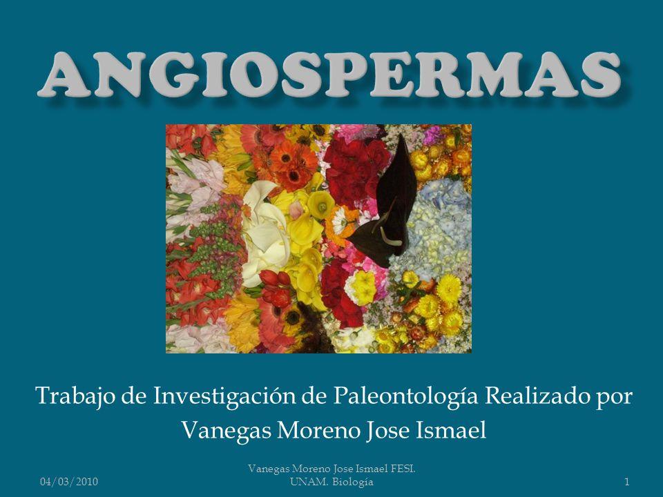 Trabajo de Investigación de Paleontología Realizado por Vanegas Moreno Jose Ismael 04/03/20101 Vanegas Moreno Jose Ismael FESI. UNAM. Biología