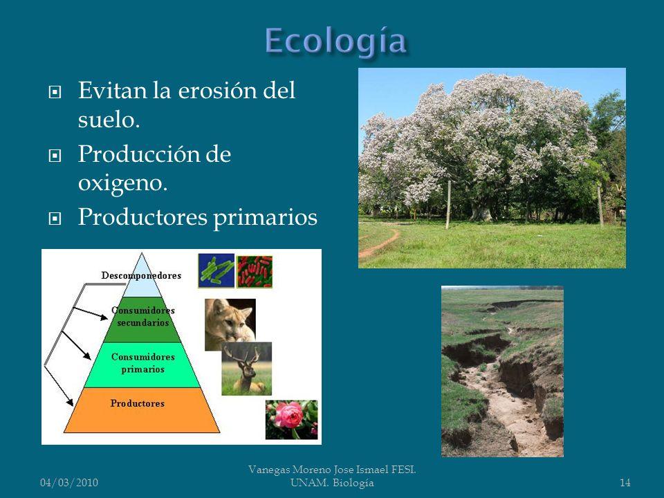Evitan la erosión del suelo. Producción de oxigeno. Productores primarios 04/03/2010 Vanegas Moreno Jose Ismael FESI. UNAM. Biología14