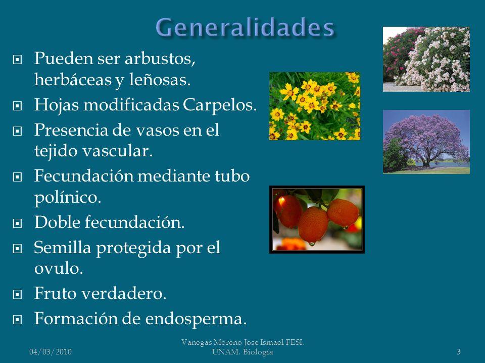 04/03/2010 Vanegas Moreno Jose Ismael FESI. UNAM. Biología4