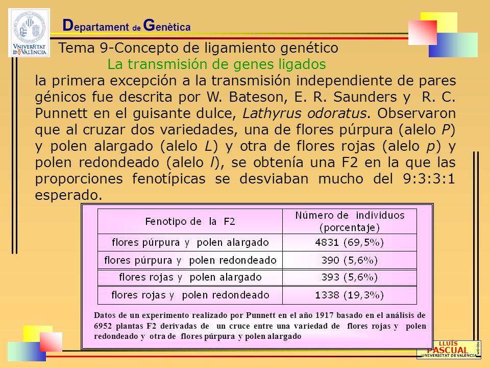 D epartament de G enètica Tema 9-Concepto de ligamiento genético Recombinación, distancia genética y mapa de ligamiento LLUÍS PASCUAL UNIVERSITAT DE VALÈNCIA 20032003 Al estudiar más genes ligados, Morgan se dio cuenta rápidamente de que la proporción de individuos recom- binantes en la progenie variaba considerablemente según los pares génicos analizados y pensó que, de alguna manera, estas variaciones en la frecuencia de recombinación podrían estar reflejando las distancias físicas que separan los genes en los cromosomas.