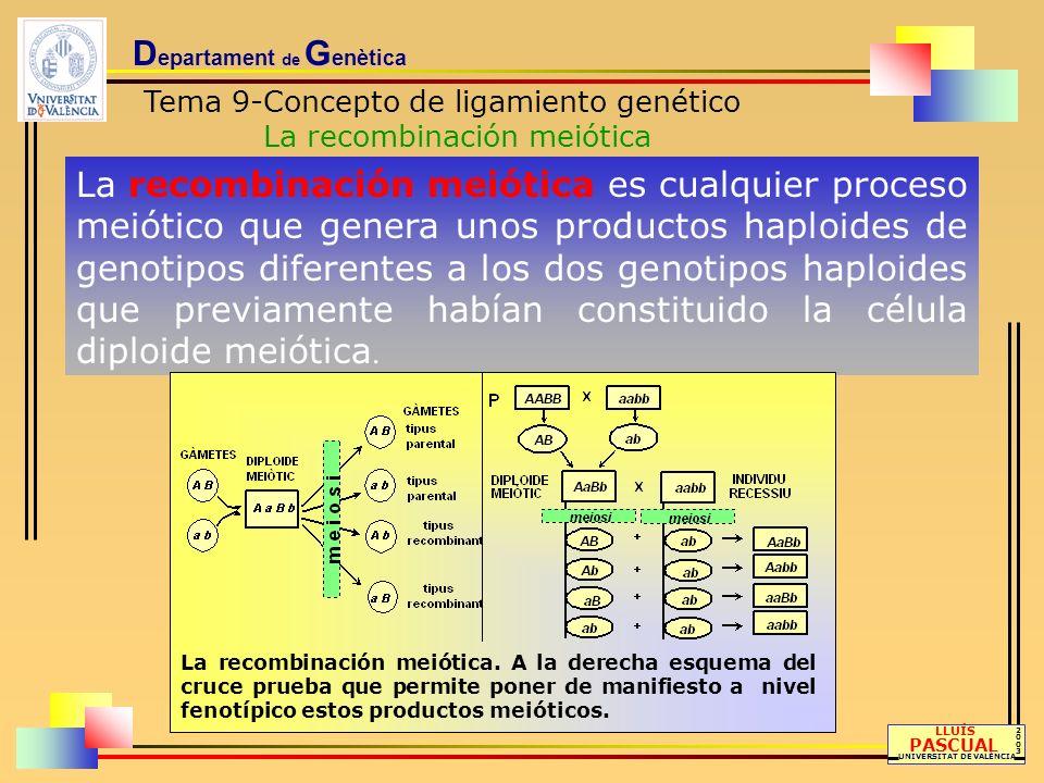 Evidentemente no todas las meiosis están obligadas a experimentar entrecruzamiento en un punto situado entre dos pares génicos pero aquella que lo presenta da como resultado la mitad de gametos recombinantes y la otra mitad parentales.