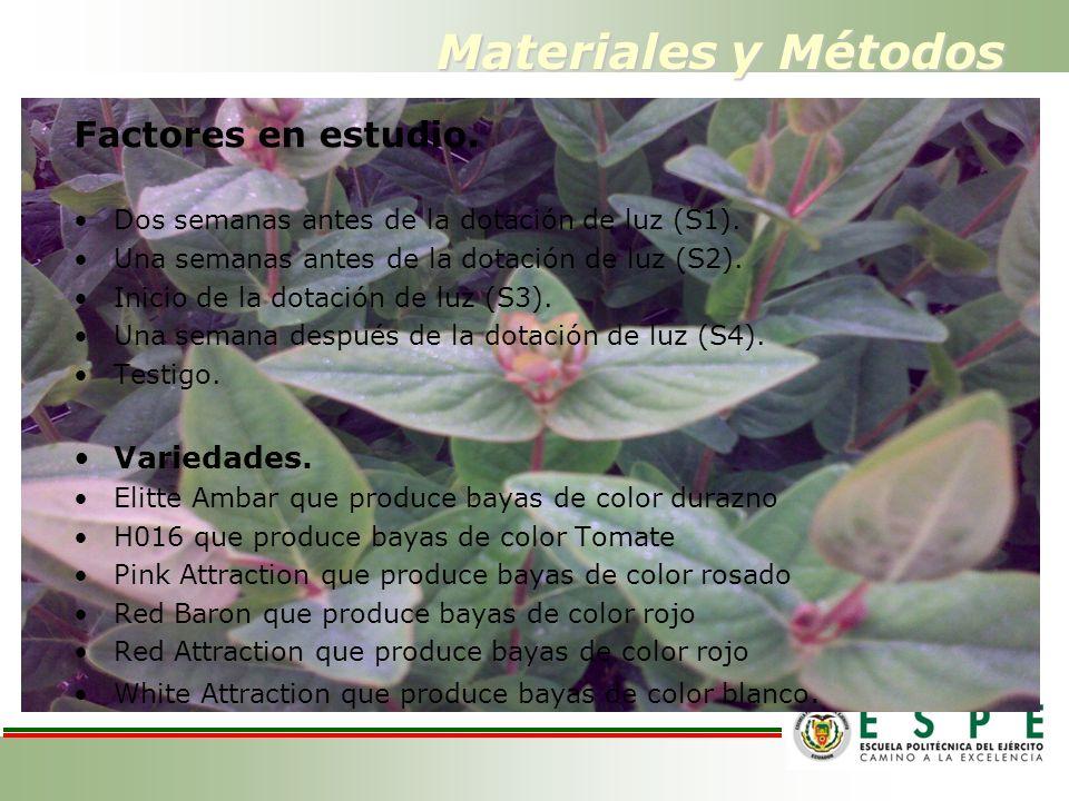 Materiales y Métodos Factores en estudio. Dos semanas antes de la dotación de luz (S1).