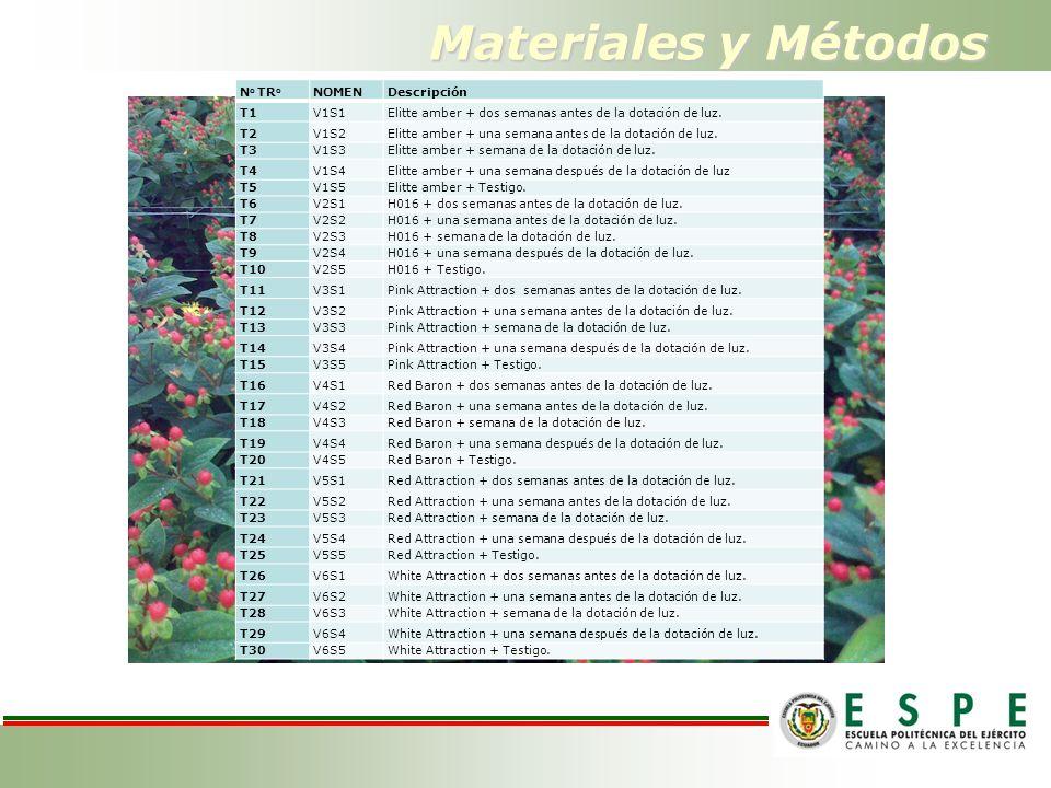 Materiales y Métodos N o TR o NOMENDescripción T1V1S1Elitte amber + dos semanas antes de la dotación de luz. T2V1S2Elitte amber + una semana antes de