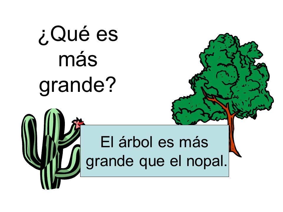 ¿Qué es más grande? El árbol es más grande que el nopal.