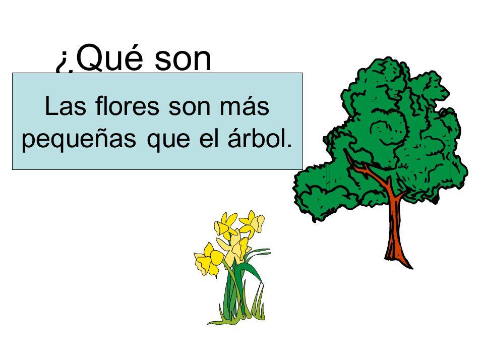 ¿Qué son más pequeñas? Las flores son más pequeñas que el árbol.