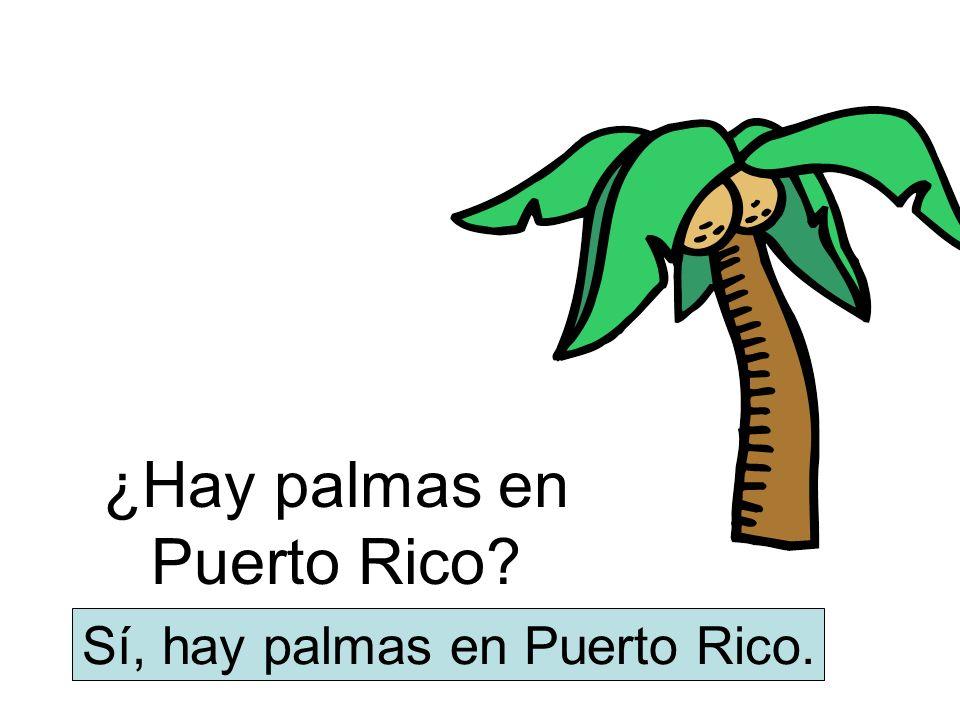 ¿Hay palmas en Puerto Rico? Sí, hay palmas en Puerto Rico.