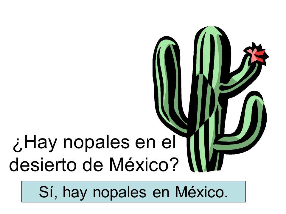 ¿Hay nopales en el desierto de México? Sí, hay nopales en México.