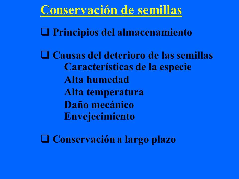 Conservación de semillas Principios del almacenamiento Causas del deterioro de las semillas Características de la especie Alta humedad Alta temperatur