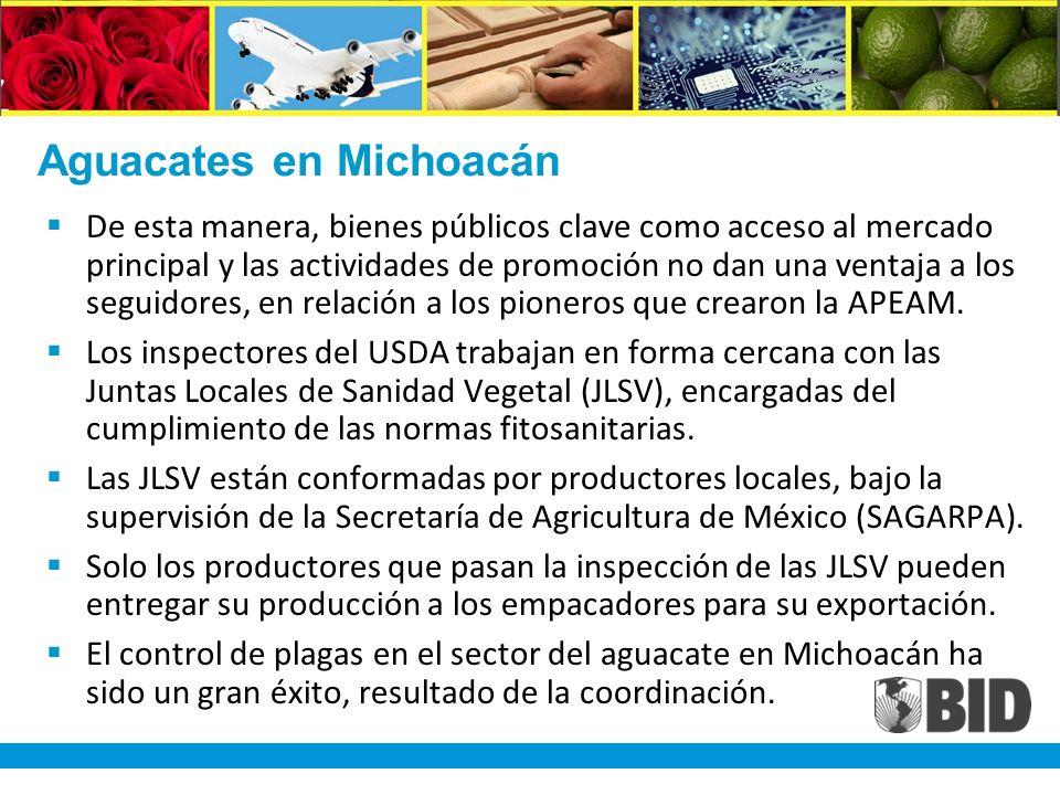Aguacates en Michoacán De esta manera, bienes públicos clave como acceso al mercado principal y las actividades de promoción no dan una ventaja a los seguidores, en relación a los pioneros que crearon la APEAM.