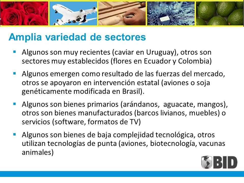Amplia variedad de sectores Algunos son muy recientes (caviar en Uruguay), otros son sectores muy establecidos (flores en Ecuador y Colombia) Algunos emergen como resultado de las fuerzas del mercado, otros se apoyaron en intervención estatal (aviones o soja genéticamente modificada en Brasil).