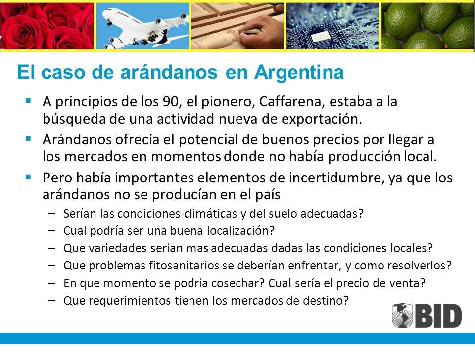 El caso de arándanos en Argentina A principios de los 90, el pionero, Caffarena, estaba a la búsqueda de una actividad nueva de exportación.