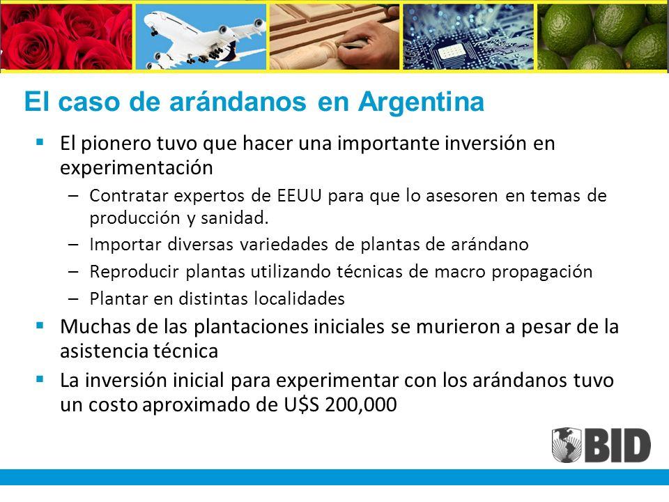 El caso de arándanos en Argentina El pionero tuvo que hacer una importante inversión en experimentación –Contratar expertos de EEUU para que lo asesoren en temas de producción y sanidad.