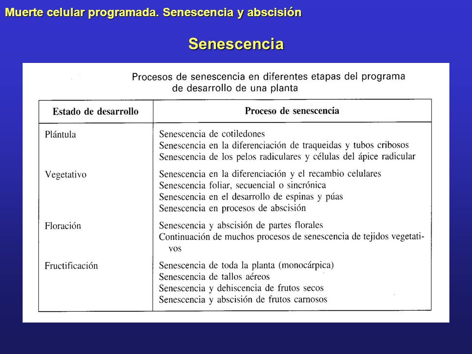 Muerte celular programada. Senescencia y abscisión Senescencia