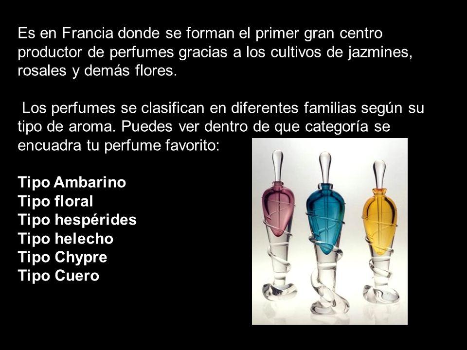 Es en Francia donde se forman el primer gran centro productor de perfumes gracias a los cultivos de jazmines, rosales y demás flores. Los perfumes se
