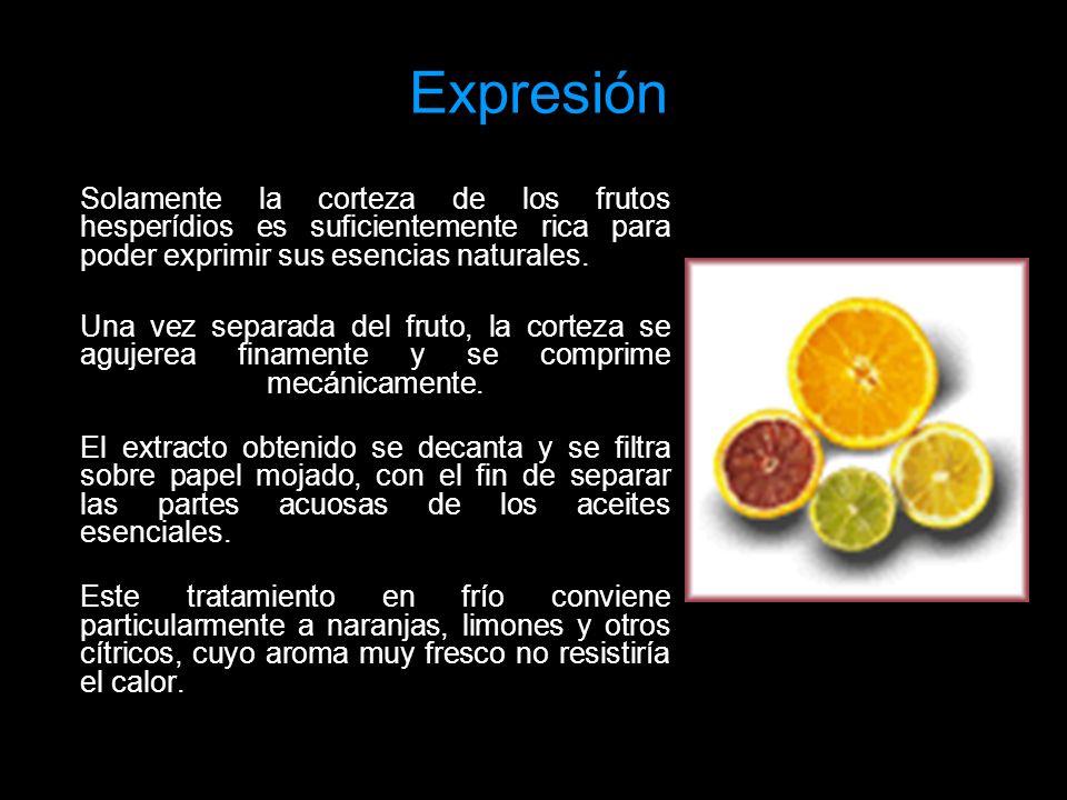 Expresión Solamente la corteza de los frutos hesperídios es suficientemente rica para poder exprimir sus esencias naturales. Una vez separada del frut