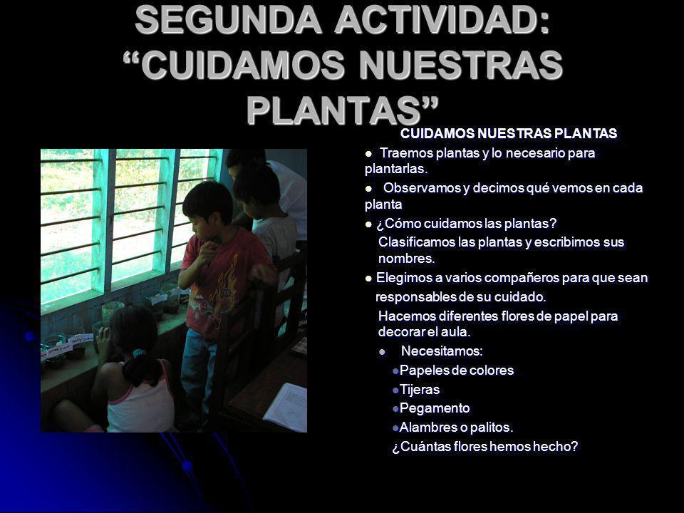 SEGUNDA ACTIVIDAD: CUIDAMOS NUESTRAS PLANTAS CUIDAMOS NUESTRAS PLANTAS Traemos plantas y lo necesario para plantarlas. Traemos plantas y lo necesario