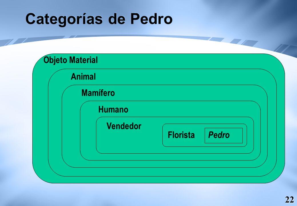 22 Categorías de Pedro Objeto Material Animal Mamífero Humano Vendedor Florista Pedro
