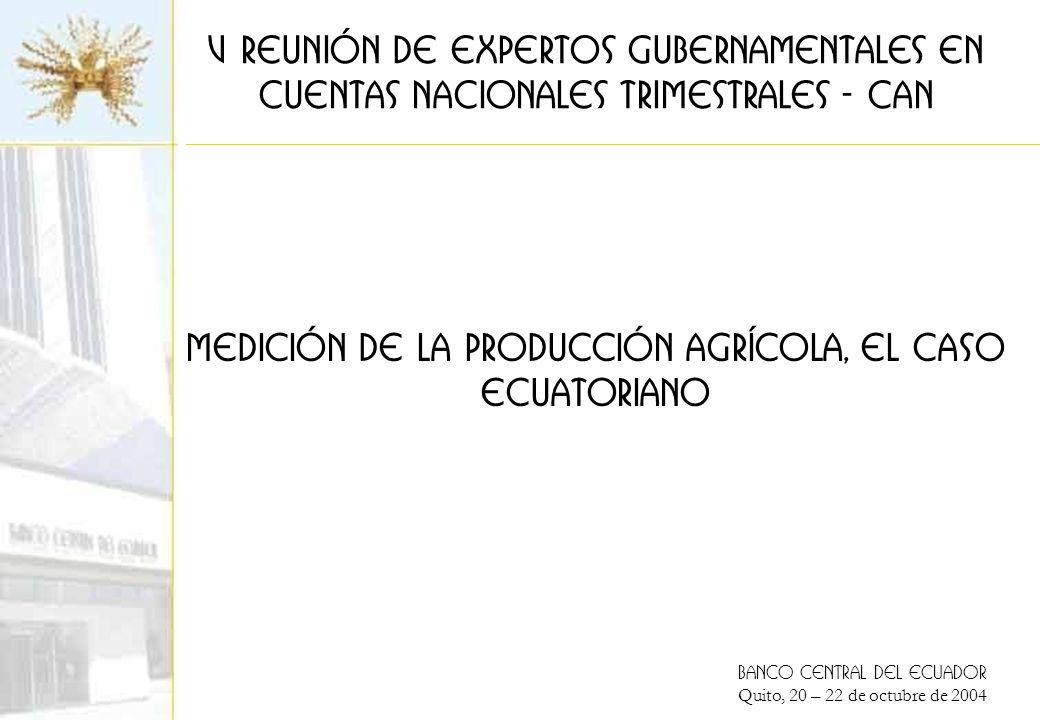 BANCO CENTRAL DEL ECUADOR Quito, 20 – 22 de octubre de 2004 Medición de la producción agrícola, el caso ECUATORIANO V Reunión de expertos Gubernamentales en cuentas nacionales trimestrales - CAn