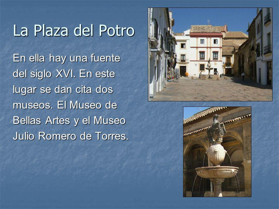 La Plaza del Potro En ella hay una fuente del siglo XVI. En este lugar se dan cita dos museos. El Museo de Bellas Artes y el Museo Julio Romero de Tor