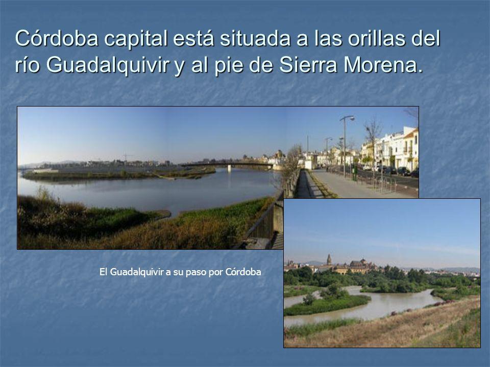 Córdoba capital está situada a las orillas del río Guadalquivir y al pie de Sierra Morena. El Guadalquivir a su paso por Córdoba