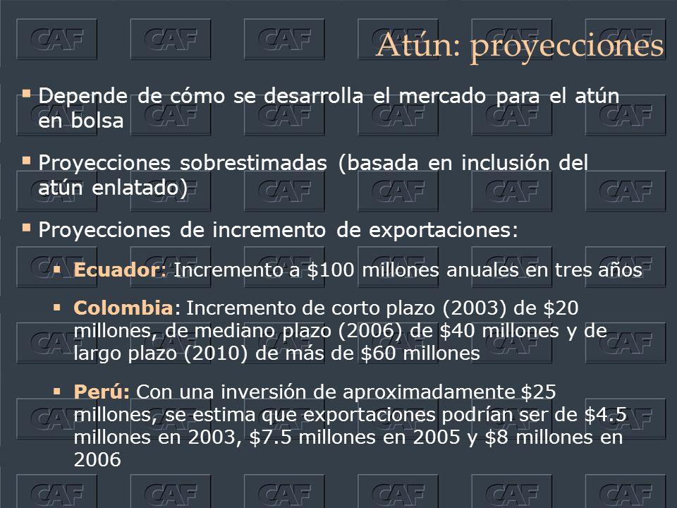 Atún: proyecciones Depende de cómo se desarrolla el mercado para el atún en bolsa Proyecciones sobrestimadas (basada en inclusión del atún enlatado) Proyecciones de incremento de exportaciones: Ecuador: Incremento a $100 millones anuales en tres años Colombia: Incremento de corto plazo (2003) de $20 millones, de mediano plazo (2006) de $40 millones y de largo plazo (2010) de más de $60 millones Perú: Con una inversión de aproximadamente $25 millones, se estima que exportaciones podrían ser de $4.5 millones en 2003, $7.5 millones en 2005 y $8 millones en 2006