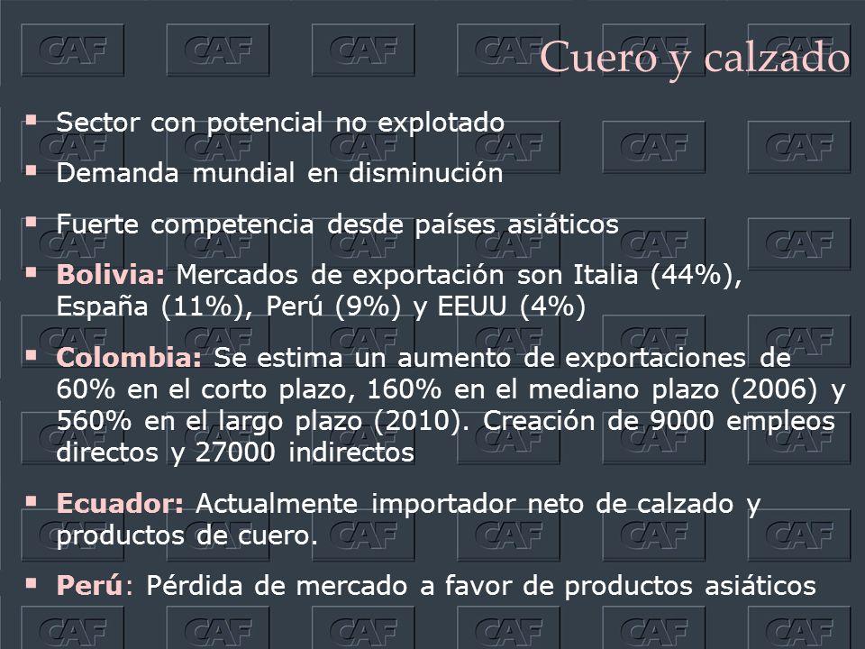 Cuero y calzado Sector con potencial no explotado Demanda mundial en disminución Fuerte competencia desde países asiáticos Bolivia: Mercados de exportación son Italia (44%), España (11%), Perú (9%) y EEUU (4%) Colombia: Se estima un aumento de exportaciones de 60% en el corto plazo, 160% en el mediano plazo (2006) y 560% en el largo plazo (2010).