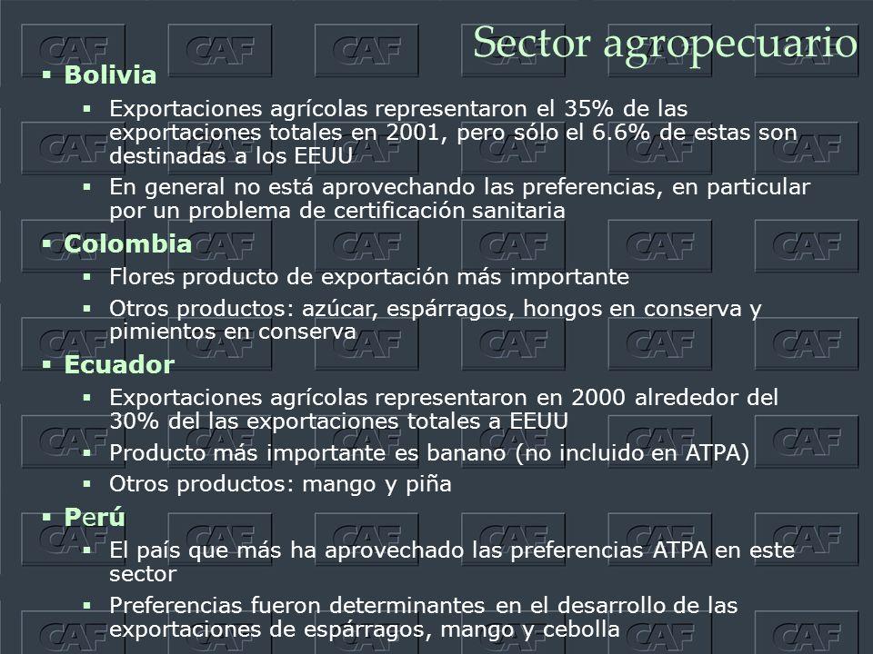 Sector agropecuario Bolivia Exportaciones agrícolas representaron el 35% de las exportaciones totales en 2001, pero sólo el 6.6% de estas son destinadas a los EEUU En general no está aprovechando las preferencias, en particular por un problema de certificación sanitaria Colombia Flores producto de exportación más importante Otros productos: azúcar, espárragos, hongos en conserva y pimientos en conserva Ecuador Exportaciones agrícolas representaron en 2000 alrededor del 30% del las exportaciones totales a EEUU Producto más importante es banano (no incluido en ATPA) Otros productos: mango y piña Perú El país que más ha aprovechado las preferencias ATPA en este sector Preferencias fueron determinantes en el desarrollo de las exportaciones de espárragos, mango y cebolla