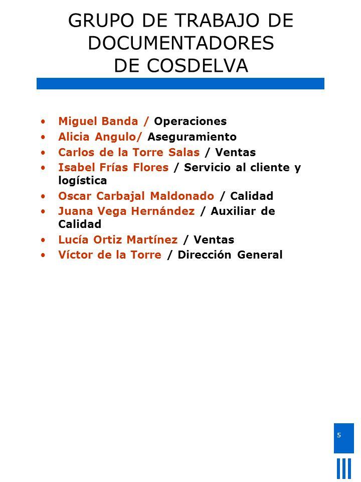 5 GRUPO DE TRABAJO DE DOCUMENTADORES DE COSDELVA Miguel Banda / Operaciones Alicia Angulo/ Aseguramiento Carlos de la Torre Salas / Ventas Isabel Fría