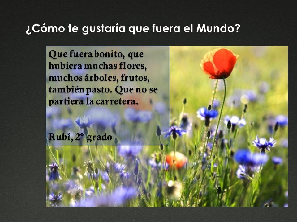 ¿Cómo te gustaría que fuera el Mundo? Que fuera bonito, que hubiera muchas flores, muchos árboles, frutos, también pasto. Que no se partiera la carret